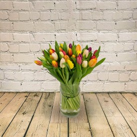 Timeless Tulips Hand-Tied