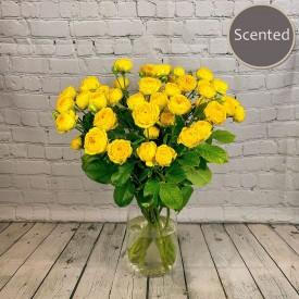 Heaven Scent - Yellow