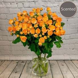 Heaven Scent - Orange